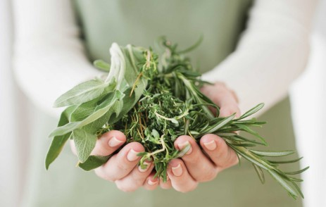 cropped-handful-herbs.jpg