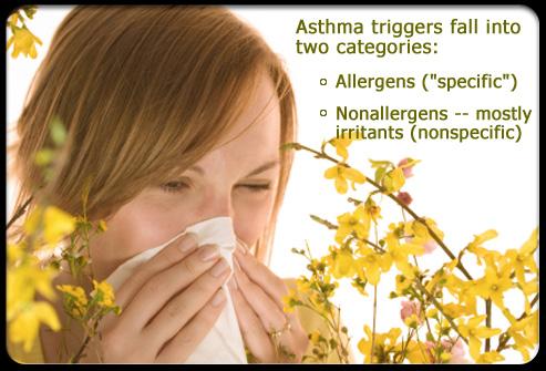 Asthma – Part 3.Allergens.