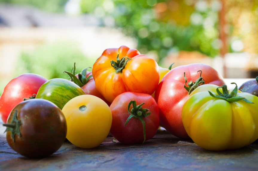 Heirloom_Tomatoes-1