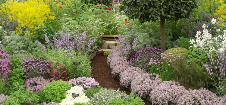 Charming Designing A Garden Can Be Great Fun As You Consider Potential Plants And  Plant Combinations, Plant Placement, And Hardscape Features {such As Walls,  ...