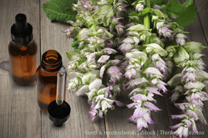 Clary Sage Oil: The Gentler Sage Oil