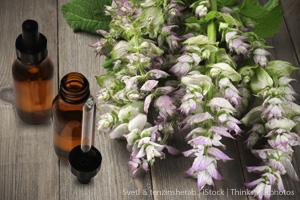 Clary Sage Oil: The Gentler SageOil