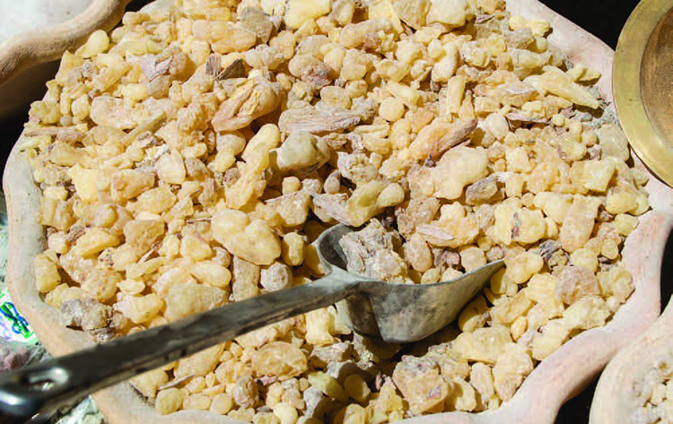 Can Frankincense Treat Cancer?