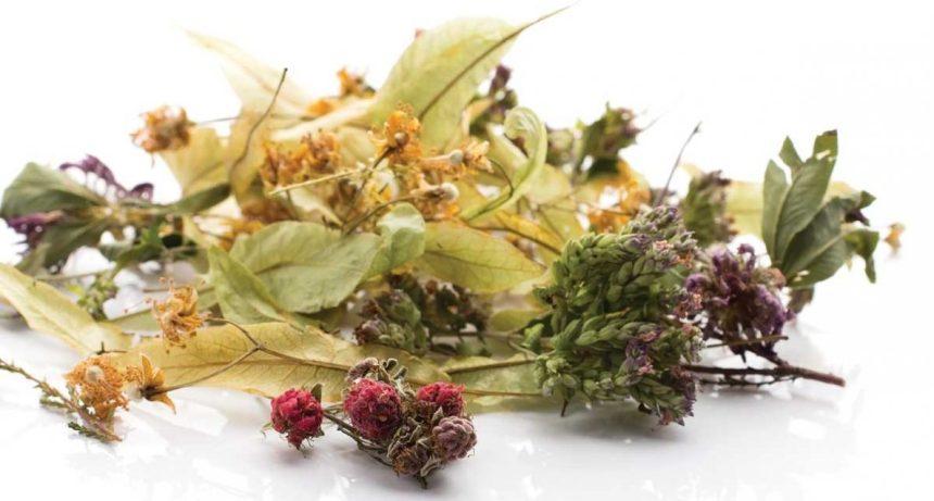 cropped-tea-herbs.jpg