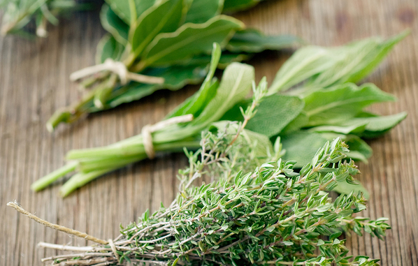 herbs-for-cold-and-flu