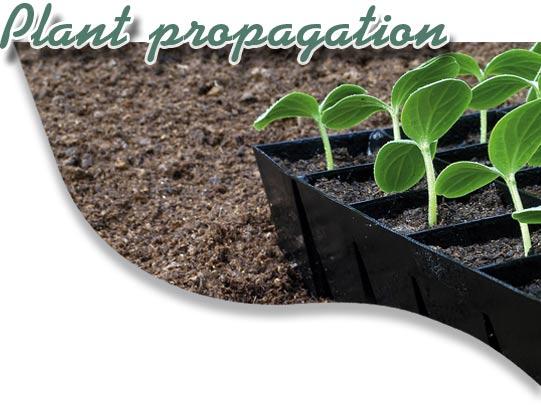 plantpropagok