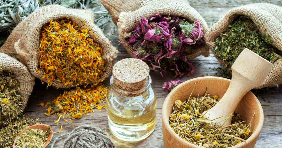 What Are NervineHerbs?