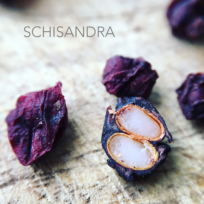 schisandraberry_text
