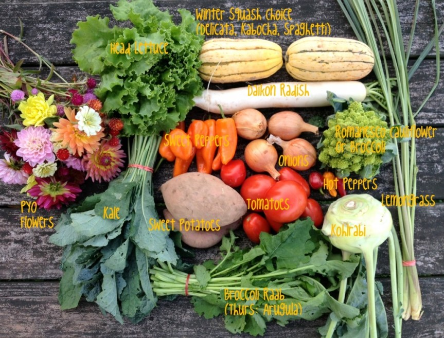Preventing And Fighting Cancer With Fruits, Vegetables, AndHerbs