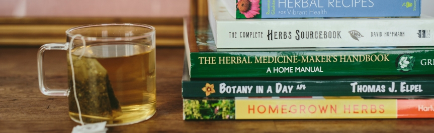 Quick Educational Reference Guide with Brief Explanations on the Uses of Herbs