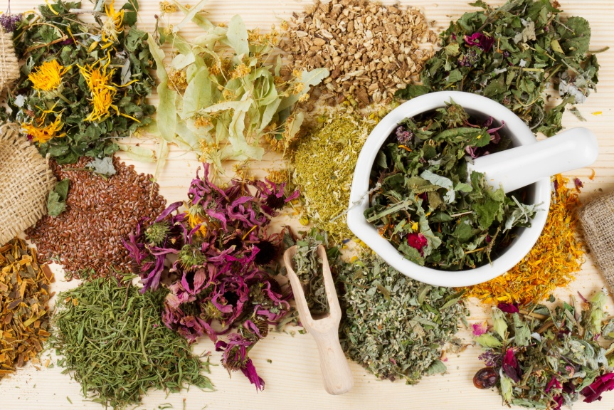 4 Bulk Herb Wholesalers You Can Trust