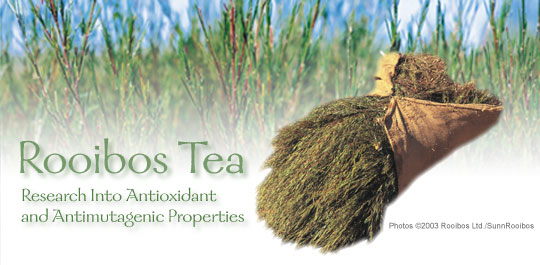 Rooibos Tea: Research into Antioxidant and Antimutagenic Properties