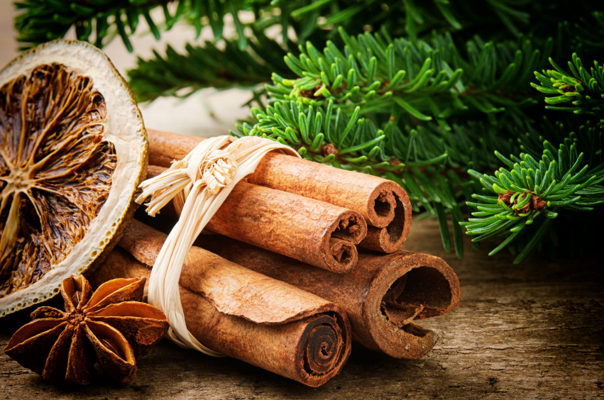 Our Holiday Favorite Spice:Cinnamon