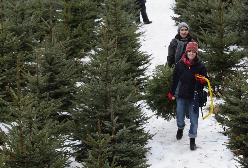 Is Christmas Tree Syndrome A RealThing?