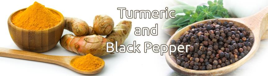 Turmeric and Black Pepper: A WinningCombination