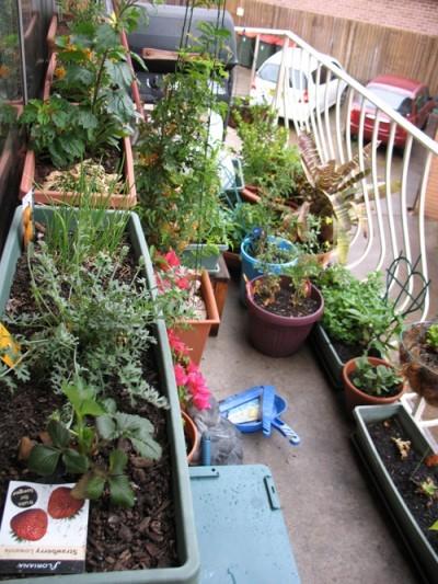 apartment-garden1-400x533