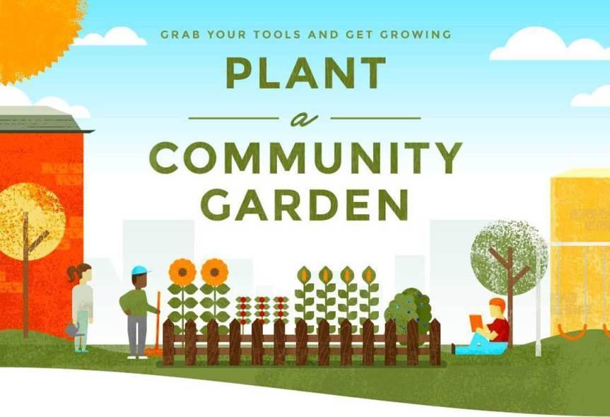 Community Garden Series: Five Tips for Community Garden Leaders andOrganizers