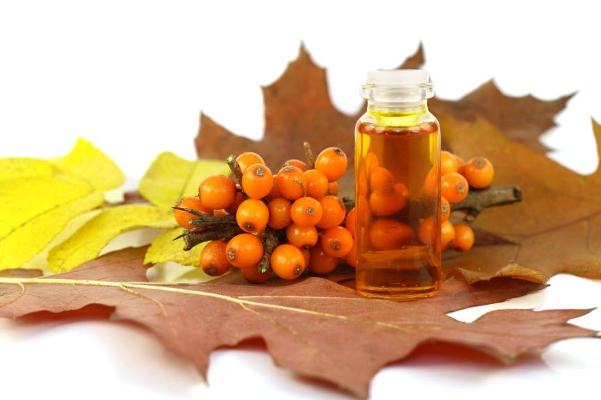 Sea Buckthorn Decreases and Delays Postprandial Insulin Response in Overweight and ObeseMales