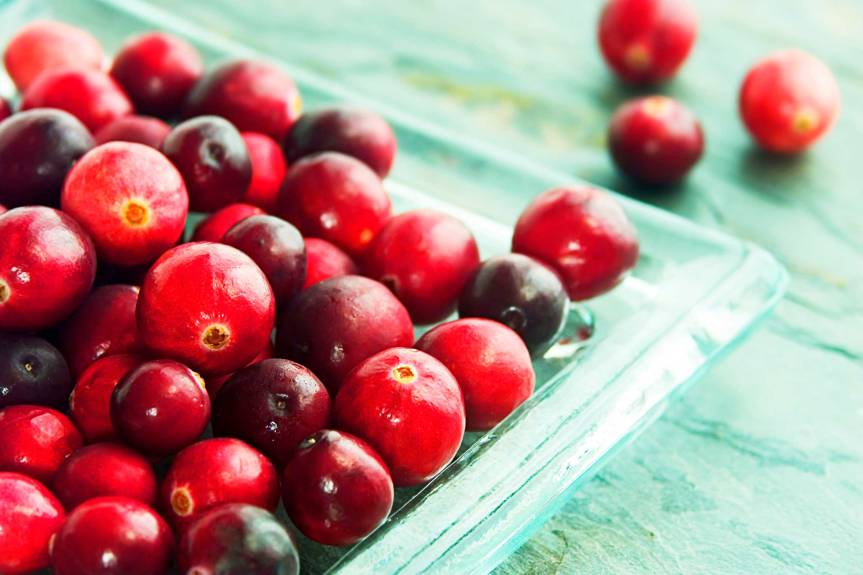 Systematic Review on the Use of Cranberry Products to Prevent Urinary Tract Infections in Healthy Women
