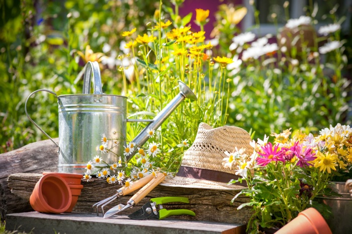 How To Guarantee Your Garden Starts Off On The RightFoot