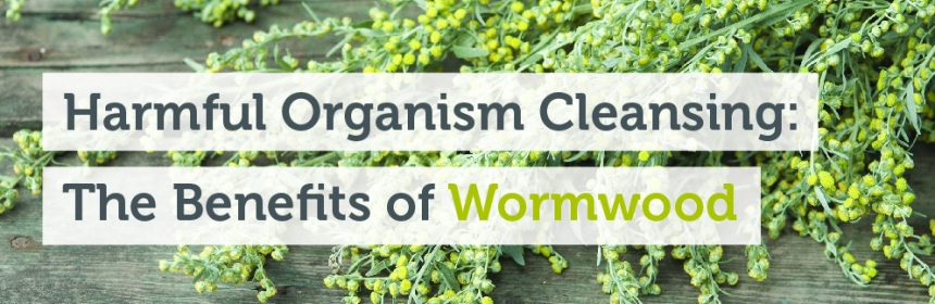 What Is 'Wormwood' and The Health Benefits of Wormwood | Crooked