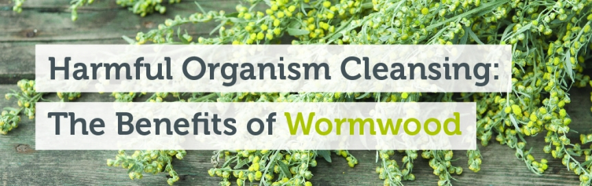 What Is 'Wormwood' and The Health Benefits of Wormwood