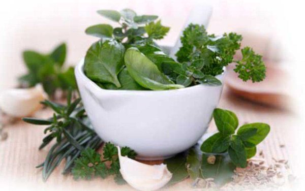 Boost Your Juice WithHerbs
