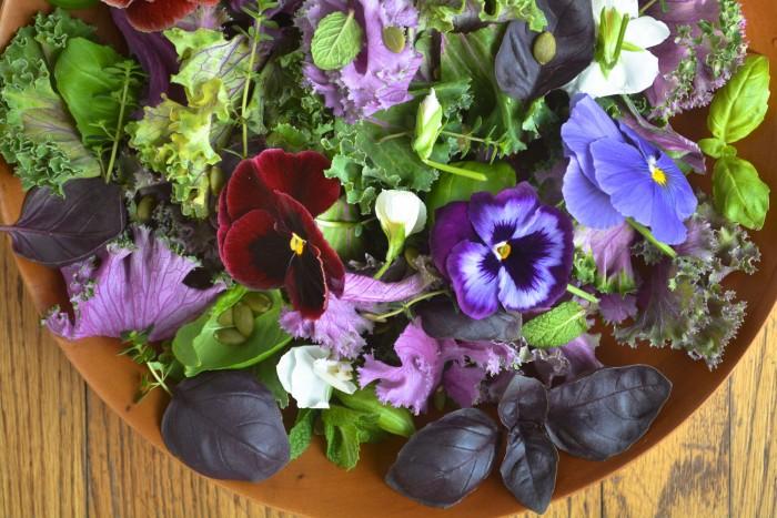 Edible Spring Greens{Recipes}