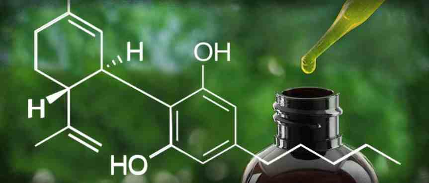 Study Finds Cannabidiol Reduces Frequency of Convulsive Seizures in Children and Young Adults with Dravet Syndrome