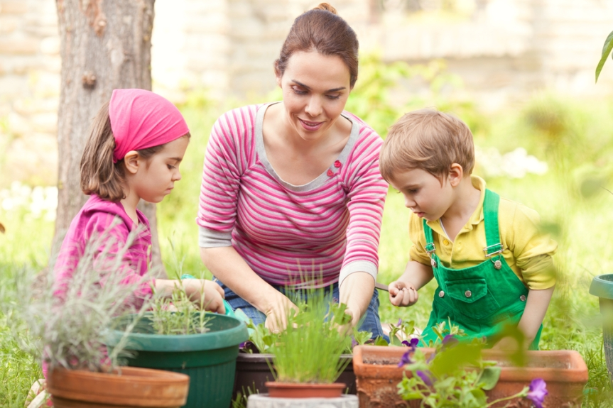 Creating Herb Gardens With Children