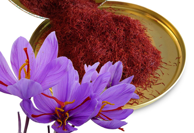 Clinical Trial Finds Saffron Effective in the Treatment of Mild Depression and Anxiety in Youth
