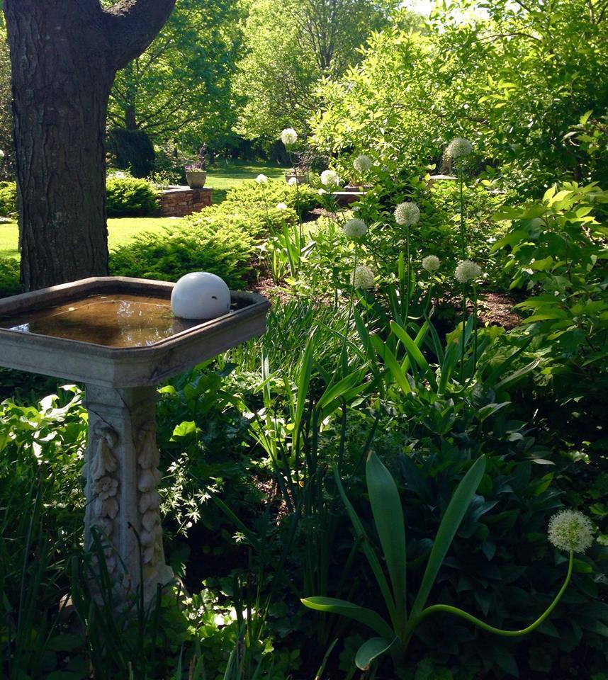"""Creating A """"Welltality"""" Garden"""
