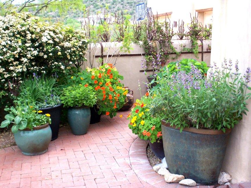 D-Lunt-Kitchen-Garden