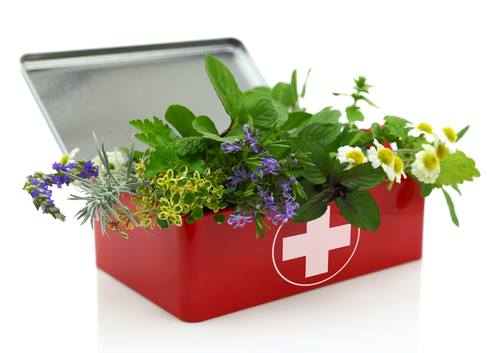 herbal first aid kit