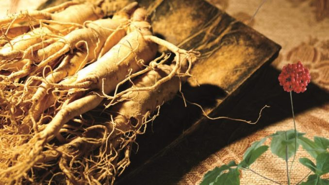 Korean Red Ginseng May Reduce Genotoxicity and Improve Quality of Life in Patients with Epithelial Ovarian Cancer receiving Chemotherapy
