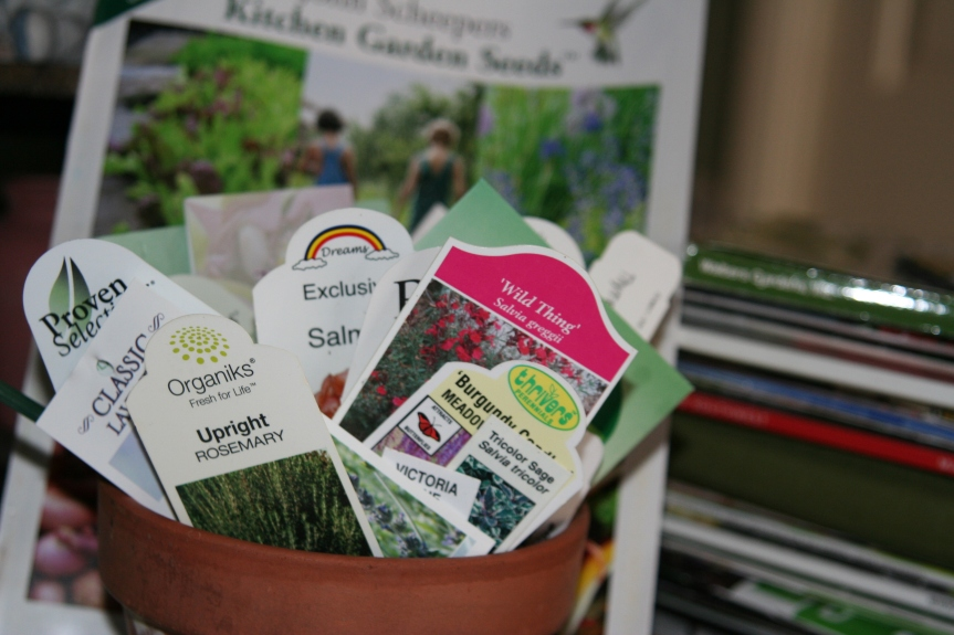 Reading Plant Tags for Garden Success