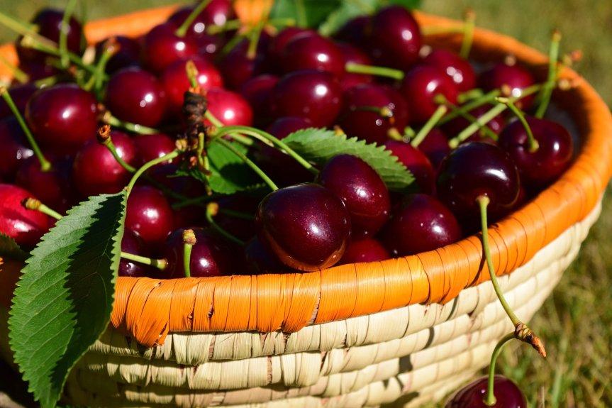 Food as Medicine: Cherry (Prunus avium and P. cerasus,Rosaceae)