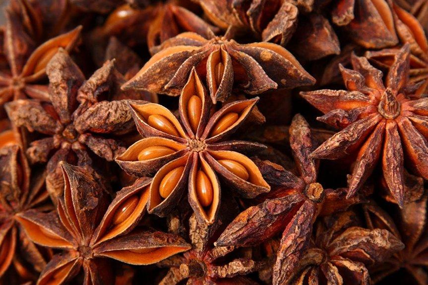 Food as Medicine: Anise (Pimpinella anisum,Apiaceae)