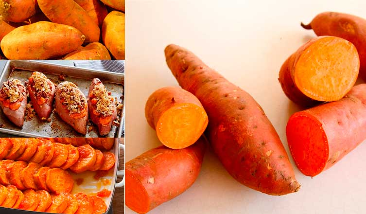 Food as Medicine Update: Sweet Potato (Ipomoea batatas,Convolvulaceae)