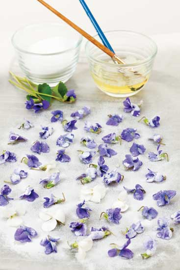 candied-violets jpg