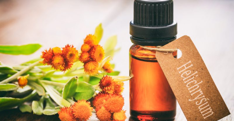 Aromatherapy with Peppermint, Basil, and Helichrysum Essential Oils for Mental Exhaustion and Burnout Relief