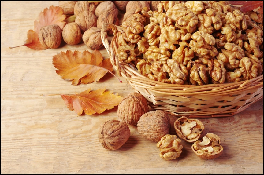 Clinical Trial Finds that Walnut Leaf Extract is Ineffective for Reducing Cardiovascular Risk Factors Associated with Type 2 Diabetes