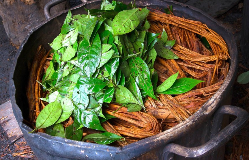 Ayahuasca Increases Salivary Cortisol Levels in Patients with Treatment-Resistant Major Depression and HealthyControls