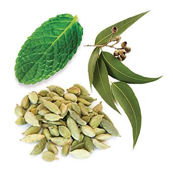 cardamom aromatherapy