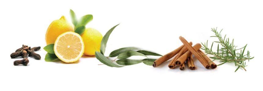 clove rosemary lemon immune herbs